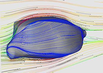 Модель кузовковой рыбы в аэродинамическом туннеле