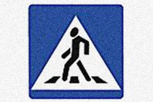 На защите детей и пешеходов